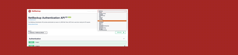 Feature 3 - Operational Simplicity - API Focused